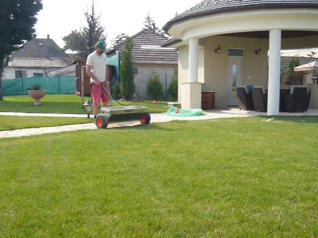 Pieskovanie trávnika